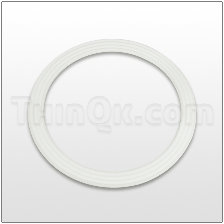 Seal (T720.039.600) PTFE